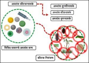 अब्जांश तंत्रज्ञान आणि पीक संरक्षण (Nanotechnology in Crop protection)