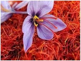 काश्मिरी केशर (Kashmir Saffron)