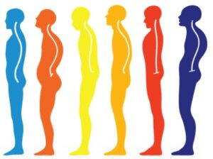 Read more about the article शारीरिक ठेवण (Posture)