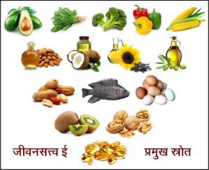 Read more about the article जीवनसत्त्व ई (Vitamin E)