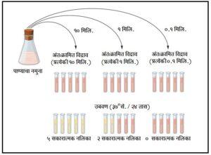 जीवाणू मापनपद्धती : संभाव्य संख्या तंत्र  (Most probable number technique)