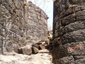 Read more about the article मानगड (Mangad Fort)