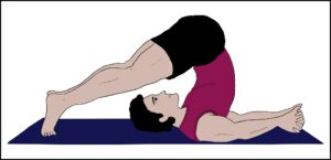 Read more about the article हलासन (Halasana)