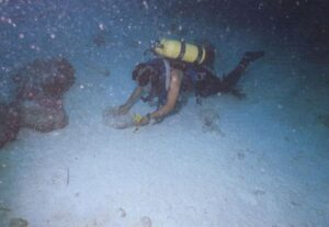 जहाजबुडीचे पुरातत्त्व : लक्षद्वीप (Shipwreck Archaeology : Lakshadweep)