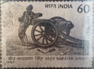 Read more about the article नारायणसिंह (Veer Narayan Singh)