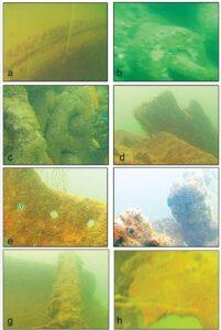 जहाजबुडीचे पुरातत्त्व : ओडिशा (Shipwreck Archaeology : Odisha)