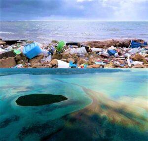 Read more about the article हिंदी महासागरातील पर्यावरणावर मानवी व्यवसायांचा परिणाम (Impact of Human Activity on Environment of Indian Ocean)