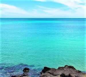 Read more about the article हिंदी महासागरातील पाण्याचे तापमान व लवणता (Temperature and Salinity of Indian Ocean Water)