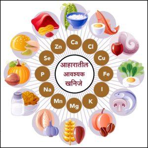 आहारातील आवश्यक खनिजे (Essential minerals in the diet)