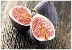 अंजीरमधील परागीभवन (Pollination in Figs)