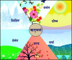 Read more about the article ऋतुचर्या (Ritucharya)