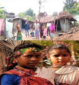 Read more about the article भारिया जमात (Bhariya Tribes)