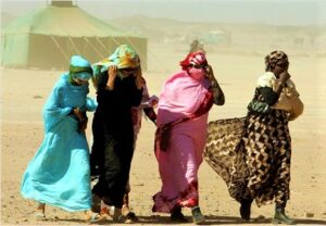 Read more about the article सहारा वाळवंटातील लोक व समाजजीवन (People and Social Life of Sahara Desert)