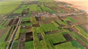 Read more about the article सहारा वाळवंटातील आर्थिक स्थिती (Economy in Sahara Desert)
