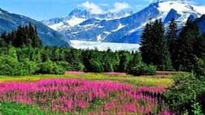 अलास्का पर्वतरांग (Alaskan Mountains)